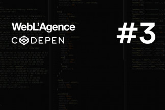 The best of Codepen #3